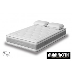Mammoth Shine Plus Mattress